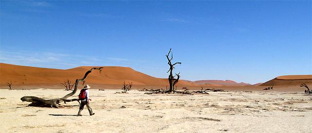 Deathvlei in der Namibwüste
