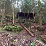 Zwieselhütte nach Sturm Herwart