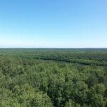 Blick vom Käflingsbergturm