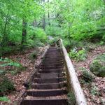05-aufstieg-klwinterberg