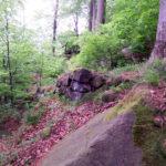 06-alter-aufstieg-klwinterb