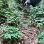 Förstersteig - erste Stufenreihe