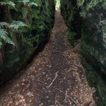Abstieg zum Räuberhöhlenturm